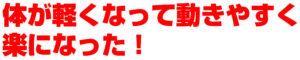 横須賀整体-腰痛-肩こり